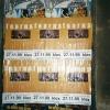 tour1999almostfamos